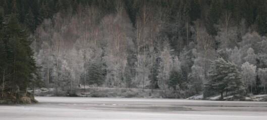 Brannvesenet advarer turgåere: - Isen på vannene i marka er ikke sikker