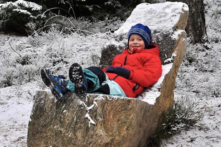 Skogens konge? Mika kler steintronen godt. Foto: Katja Johanne Pihl