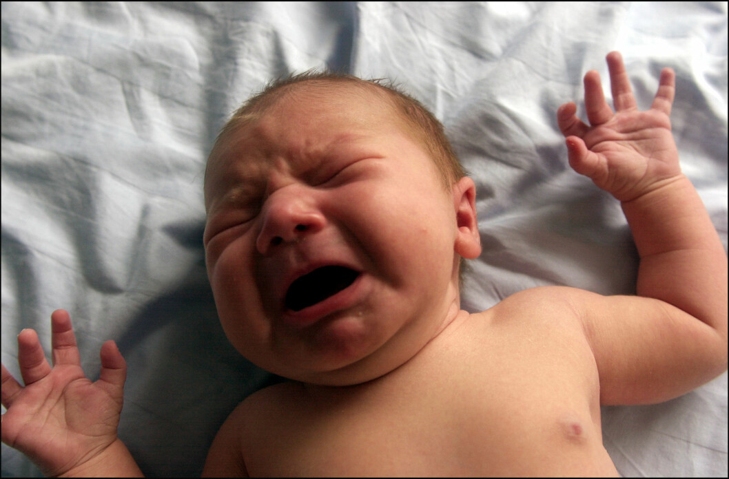 Nyfødt guttebaby gråter. Foto: Lise Åserud / SCANPIX (FRB)