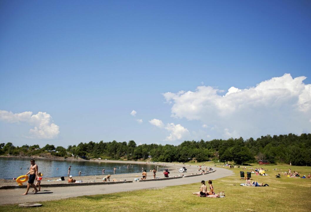 Den idylliske stranda på Langøyene er egentlig lagt over Oslos gamle søppelfylling. De siste årene har søppelet begynt å tyte ut, og skaper problemer. Foto: Tore Meek / SCANPIX .