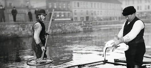 Jeg savner lyden av fiskebåtene i Oslofjorden, lyden av norsk kystkultur