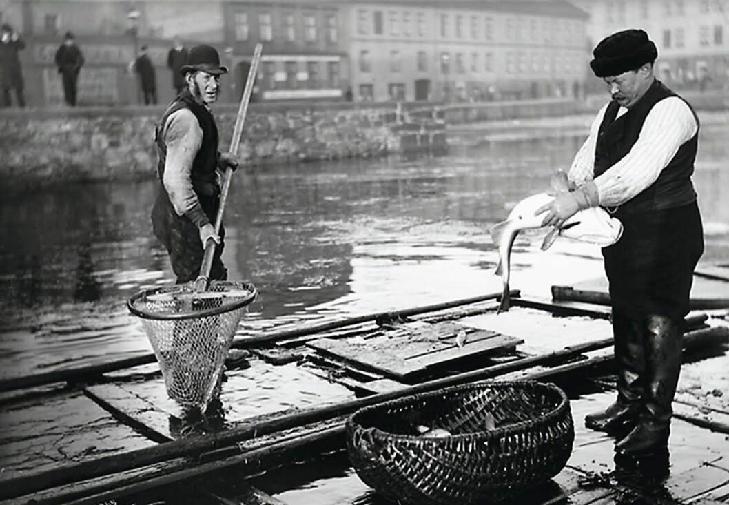 Fiskere ved Fiskebrygga, Sadelmakerhullet i 1905. Foto: Anders B. Wilse / Oslo museum