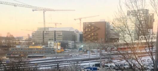 Trærne ved Bispegården i Oslogate måtte gi tapt for almesyke og Bane NORs byggeplaner