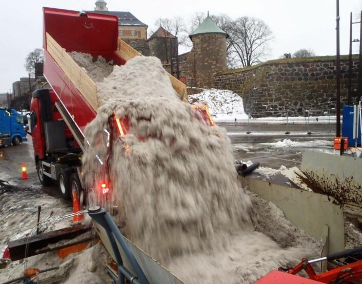 Billass på billass blir kjørt ned til snølekteren S/S Terje på Akershusstranda. Der blir snøen renset før den dumpes i Oslofjorden. Foto: Anders Høilund