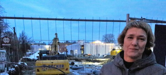 Naboer fortviler etter at alléen i Haralds vei på Lille Tøyen ble rasert