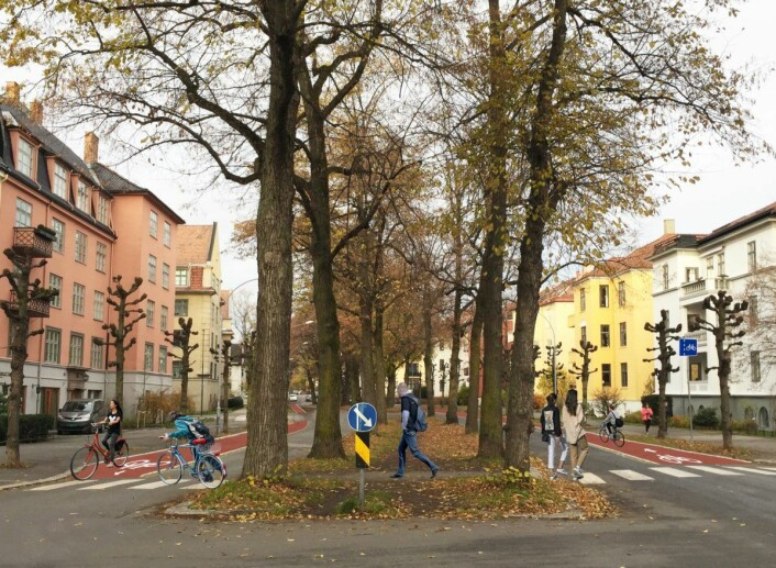 Slik ser forslaget fra Bymiljøetaten ut, med opphøyde sykkelfelt på begge sider av Gyldenløves gate. Illustrasjon: Bymiljøetaten