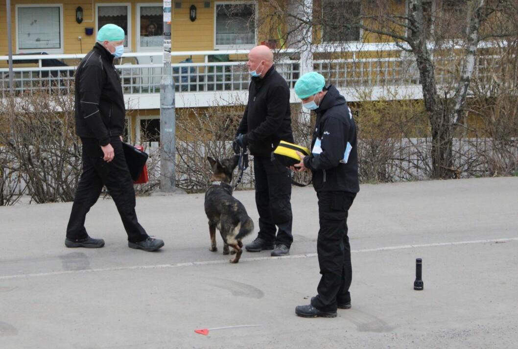 Oslo politidistrikt opplever for tiden en stor mangel på kvalifiserte og erfarne etterforskere. Illustrasjonsfoto: Henrik Skolt / NTB scanpix