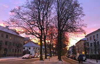 — Høyre planla selv sykkelvei i Gyldenløves gate da de satt med byrådsmakt