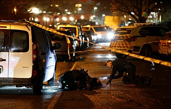 Oslo-politiet oppsummerer 2018: Utfordringer med unge lovbrytere