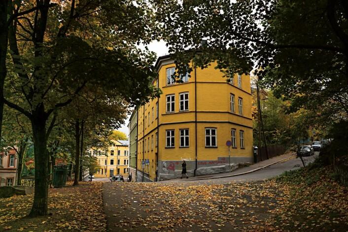 Høst på Kampen. Foto: Magne Geir Bøe.
