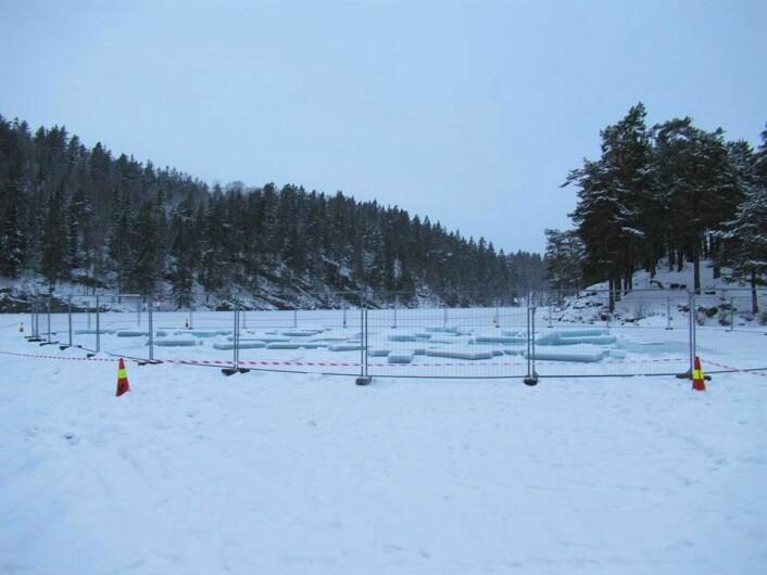 Sist uke ble det satt opp gjerder på isen som ligger over Lutvann. Omlag 700 meter av skiløypa fra Lutvann leir er fjernet og erstattet med brøytet vei for biler. Foto: Steinar Saghaug