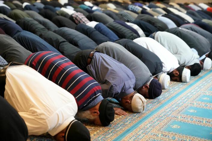 Terrorangrepet mot to moskeer i Christchurch på New Zealand skjedde mens barn, kvinner og menn satt i bønn for en uke siden. Foto: Cornelius Poppe / NTB scanpix