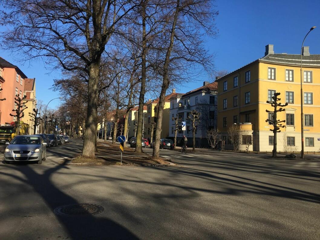 Nå frykter mange av naboene at det blir anlagt sykkelvei i Gyldenløves gate. Foto: Bent Patey