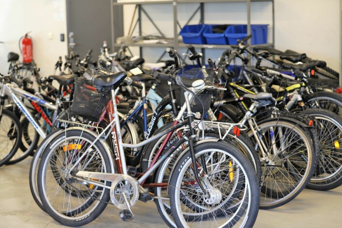 Alle disse syklene er i godkjent stand og skal selges rimelig til oslostudenter. Foto: André Kjernsli