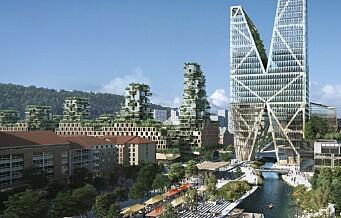 – Arkitektfirmaer vil skyggelegge hele Grønland