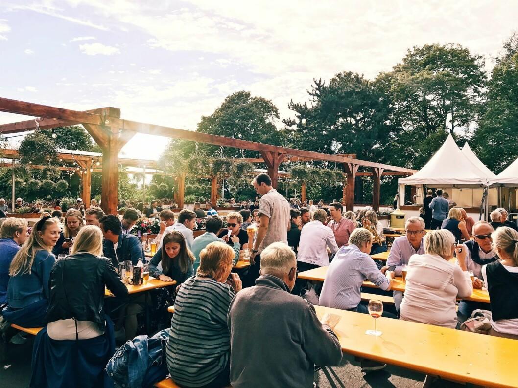 Blir været bra, blir det svært folksomt på St. Hanshaugen i år. Foto: Aleksander Eriksen