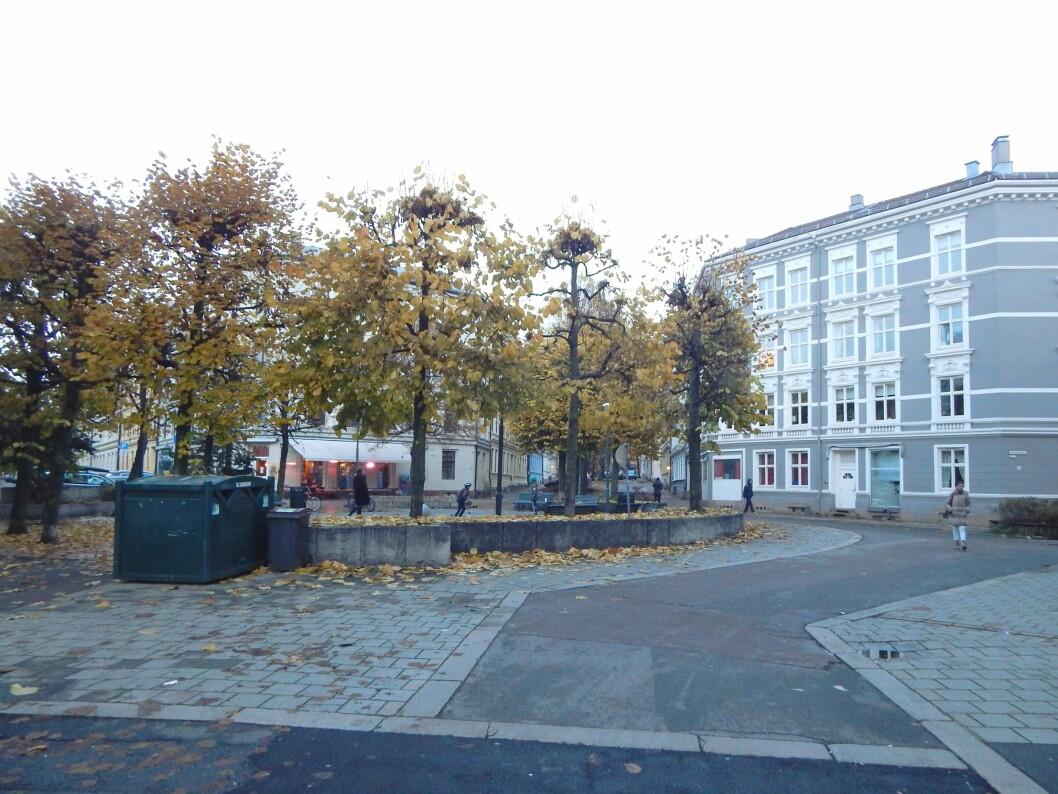 Angrepet skjedde her, på Rathkes plass på Grünerløkka. Foto: Jan-Tore Egge / CC BY-SA 4.0