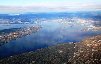 Vannet i Indre Oslofjord er mer oksygenrikt enn på lenge. Det er godt nytt for livet i fjorden
