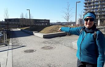 Ensjøbyen lokket til seg beboere med park og bekk. Men 11 år senere er ikke grøntområdene klare