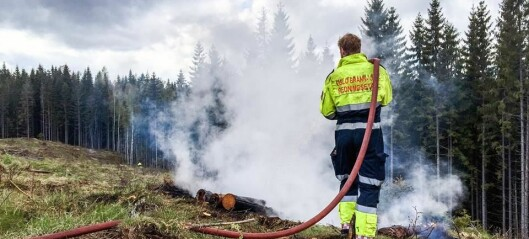 Politiet refser bålbrenning i Oslo-marka