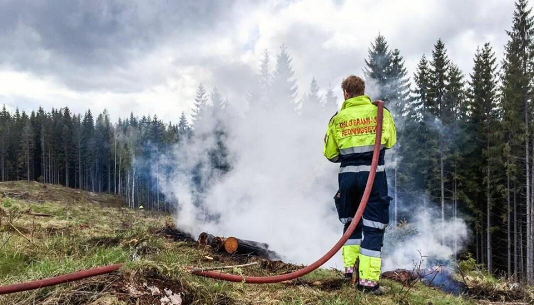 Skogen er tørr og faren for skogbrann er absolutt til stede, sier oslopolitiet.
