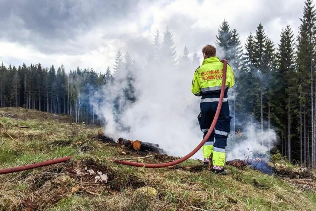 � Husk bålforbudet i skog og utmark, som også gjelder engangsgriller, advarer brannvesenet i Oslo. Foto: Oslo brann- og redningsetat