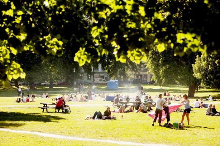 Sommer og sol i Sofienbergparken. Men også på skjærtorsdag var det mye folk i parken rett ved kirken. Foto: Stian Lysberg Solum / SCANPIX