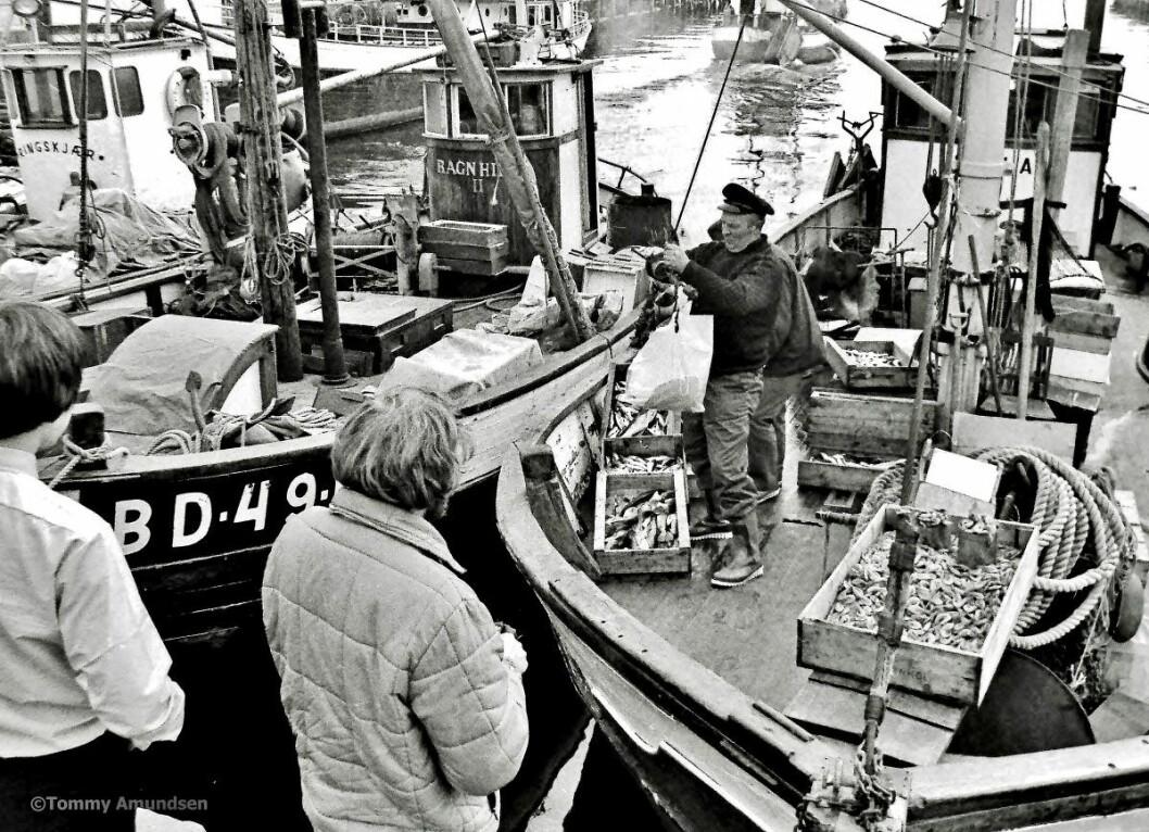 Fiskeskøyter ved Rådhusbrygga: Foto: Tommy Amundsen