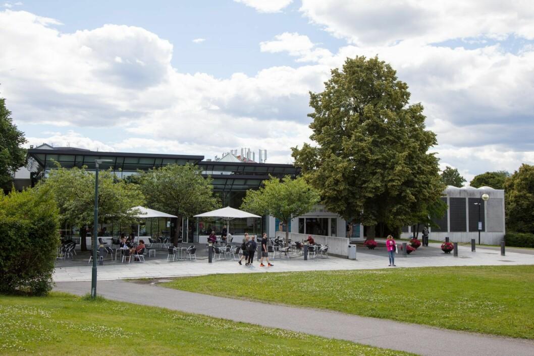 Opptil 40 menn i uviss alder skal ifølge politiet ha vært involvert i slagsmål ved Munchmuseet på Tøyen. Foto: Audun Braastad / NTB scanpix