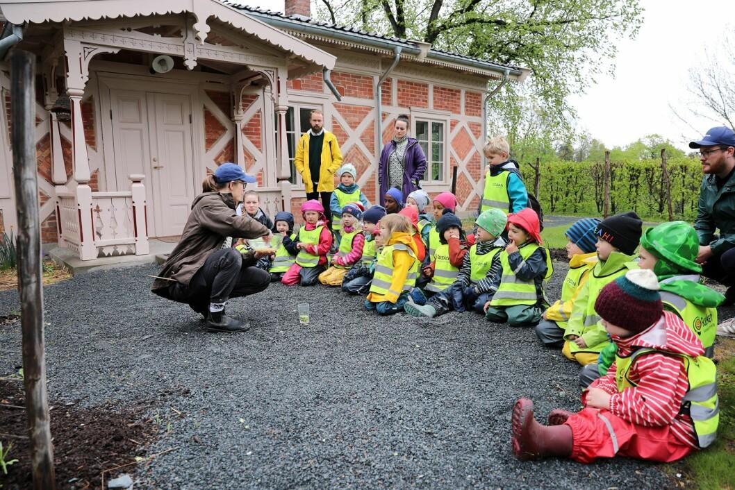 Heftyes barnehage fra St. Hanshaugen får en liten innføring i sunn og bærekraftig mat. Foto: Birgitta Eva Hollander - Heia Folk