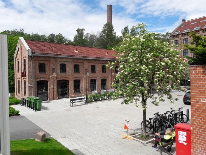 Løperne skrøt av miljøet og løypeleggingen under NM. Foto: Anders Høilnd