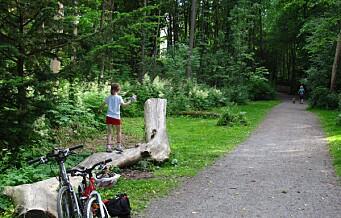Idylliske Frognerbekken en av sju grønne, familievennlige sykkelruter i storbyen Oslo