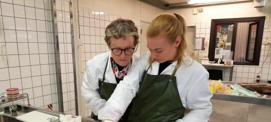 Mystisk sykdom truer laksen i Akerselva. Veterinærer frykter epidemi rammer elver i Oslo