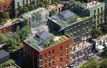 Slik ser fremtidens arkitektur ut i Oslo. Se tegningene