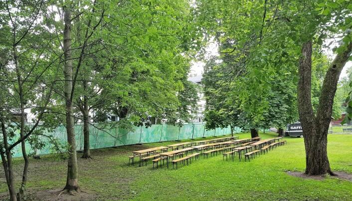 Den nye festivalen kan blant annet by på en utendørs bar bak svalende trekroner Nå kan bare sommervarmen komme. Foto Christian Boger