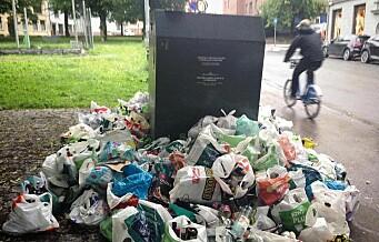 Plastposer, glass og metallemballasje fløt i Dalbergstien. Samme problem flere andre steder i byen