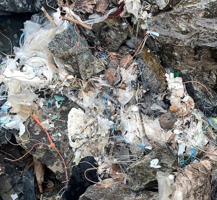 Selv på idylliske Gressholmen ligger det plast i store dynger. Det er mye å ta tak i for de som skal rydde opp etter oss. Foto: Anja Stokkan