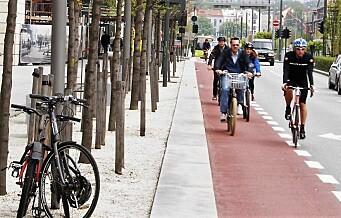 – La ikke satsingen på sykkelveier ødelegge for trærne i byen vår