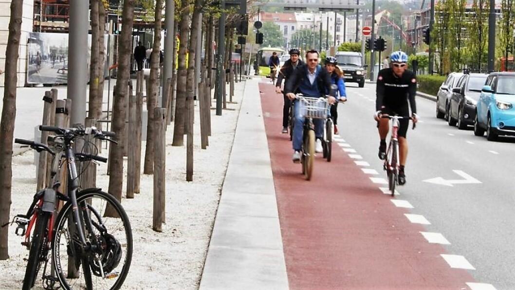 Dronning Eufemias gate blir tilrettelagt for syklister. Men la ikke dette gå utover trærne, mener skribenten. Foto: Oslo kommune