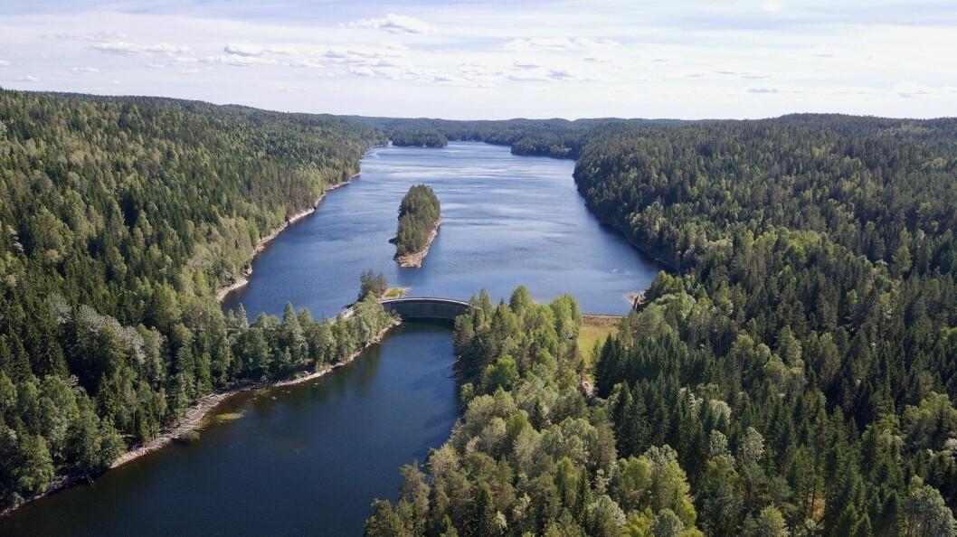 Nordre Elvåga, også kalt Nord-Elvåga, ligger nord for demningen og øst for det populære turmålet og bevertningshytta Mariholtet i Østmarka. Foto: Kjetil Ree / Wikimedia Common