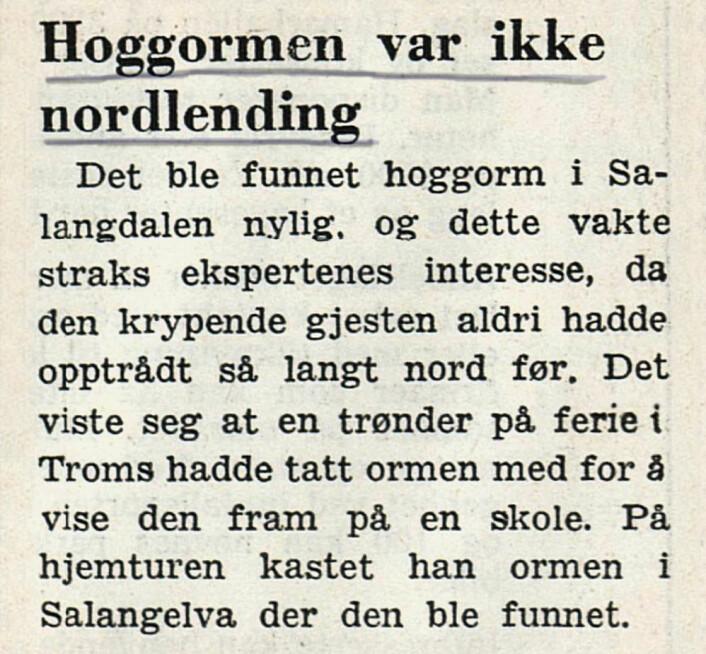 Faren avblåst. Østlendingen, 1964