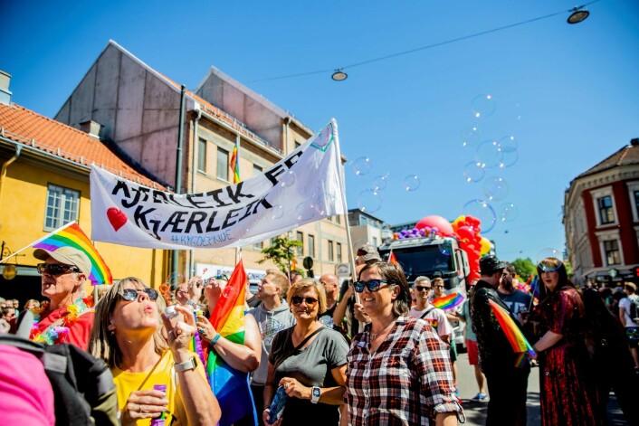 Oslo bør bli verdens homohovedstad, mener de to bydelspolitikerne. Her fra Oslo Pride Parade i fjor. Foto: Stian Lysberg Solum / NTB scanpix