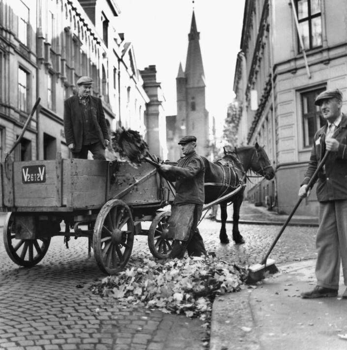 Så sent som på slutten av 1950-tallet benyttet byens renholdsarbeidere hest og vogn til å frakte bort avfallet. Her fra St. Olavs gate. Ukjent fotograf / Oslo Museum