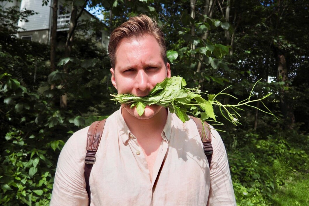 Det er ikke annet enn fullt alvor i Jørgen Ravnebergs grønne lidenskap. Her med en spiselig bukett av groblad, ryllik, løvetann, løkurt, skvallerkål, kamilleblomst og vassarve i munnen. Foto: Emilie Pascale