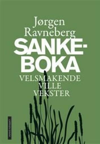 Jørgen Ravnebergs bok. Illustrasjon: Cappelen Damm