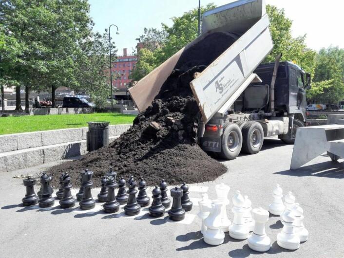 Forskremte sjakk-bønder må se at plassen deres må deles med urbane bønder som dyrker grønnsaker. Foto: Anders Høilund