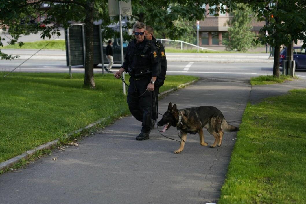 Politiets hundepatrulje ble satt inn i søk etter gjerningsmannen etter knivstikkingen under en fotballkamp på Tøyen lørdag. Foto: Fredrik Hagen / NTB scanpix