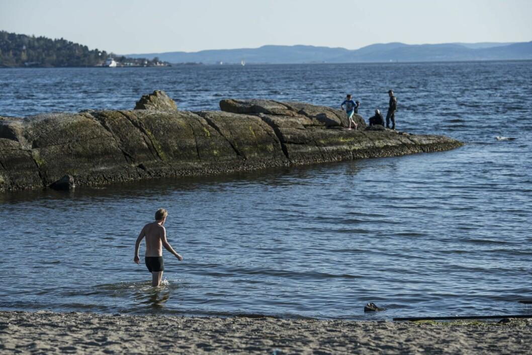 Huk på Bygdøy er tilgjengelig for alle. Men resten av Indre Oslofjord er bare omlag bare en tredjedel åpen for fri ferdsel, mot i snitt 70 prosent av kystlinjen i andre deler av landet. Foto: Aleksander Andersen / NTB scanpix