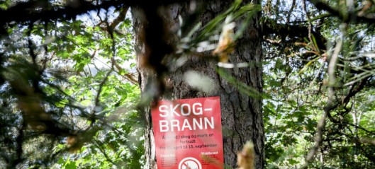 Varsel om skogbrannfare i Oslo-marka. Men til helgen kommer regnet