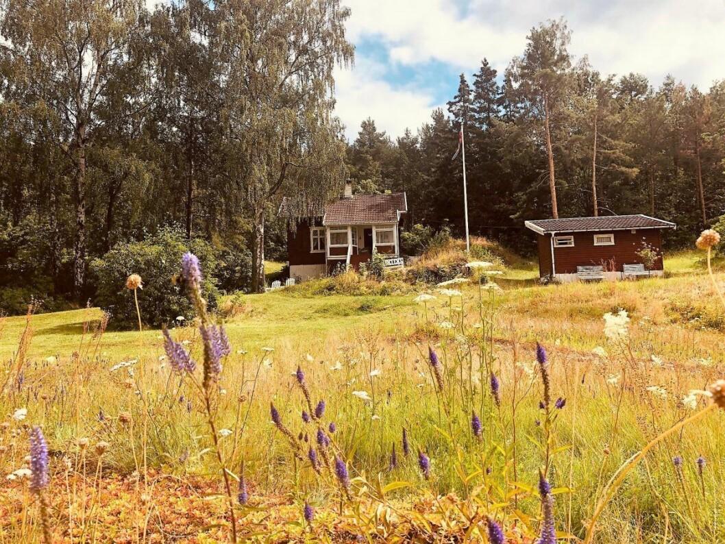 Hytta på Lindøya som skal legges ut til salgs i august med prisantydning 15 millioner kroner. I tillegg et uthus som følger med. Foto: Natalia Tesli